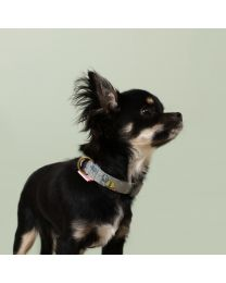 Novelty Dog Fabric Printed Collar